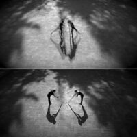 Shadow Play, 2019