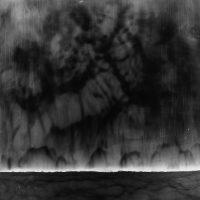 WaterWorld, Number 25. 2018.Unique Photogram. 60 x 47 in. (152 x 119 cm.)