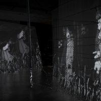 Land Escape – Multimedia Installation